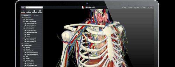 Una aplicación con 3 mil componentes de la anatomía humana – e-duque.net