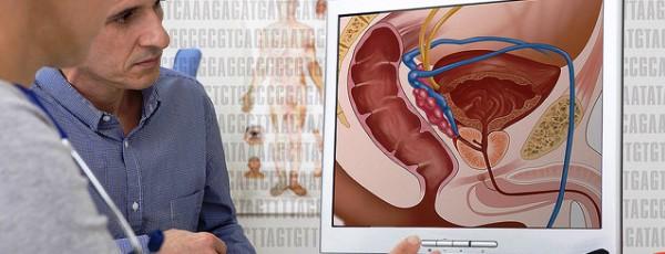 Centro virtual de anatomía, al servicio de los profesores del mundo ...